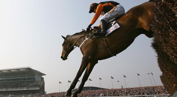 Killyglen will hope to draw on the experience gained in winning the Mildmay Novice Chase at the Aintree Grand National meeting in 2009