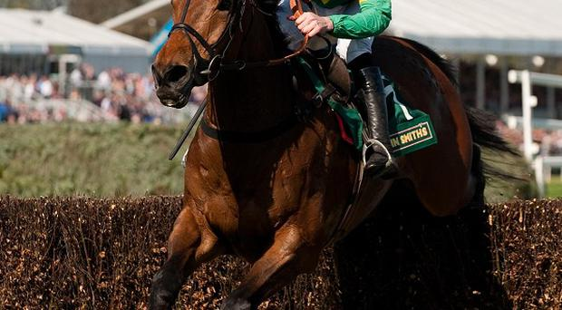 Master Minded takes the last on his way to victory