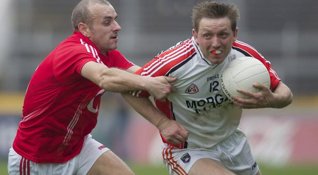 Cork's John Miskella and Armagh's Paul Duffy tussle yesterday and although the Orchard County tasted defeat, they breathed a sigh of relief after winning their survival fight