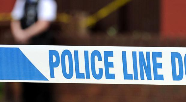 The body of a newborn baby girl has been discovered in undergrowth close to a footpath in Essex