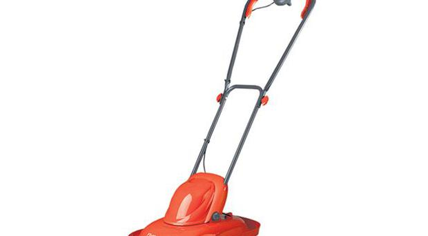 <b>FLYMO</b><br/> Flymo's Micro Lite is tiny, light and basic but does the job on smaller lawns quickly and efficiently, even on damp grass.<br/> £49.99, sainsburys.co.uk