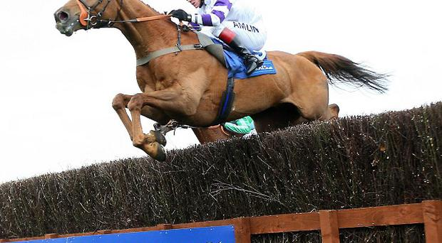 Beshabar riden by Richard Johnson won the Coral Scottish Grand National Handicap Steeple Chase at Ayr Racecourse