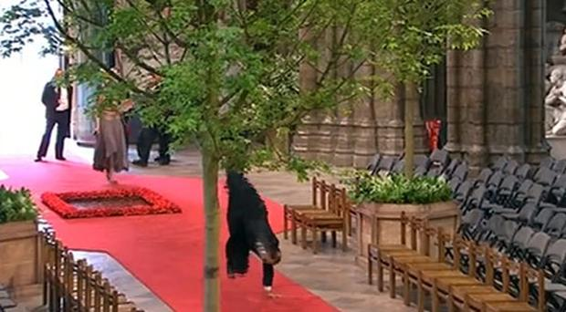 Head over heels: Verger does cartwheels in Westminster Abbey after William and Kate leave
