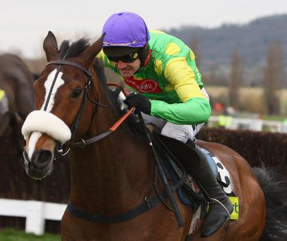End of the road? Yesterday's poor showing in Punchestown's Guinness Gold Cup could spell the end of Kauto Star's glittering career