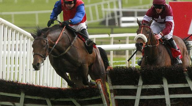 Quevega makes a mess of the last on the way to victory under Ruby Walsh at Punchestown