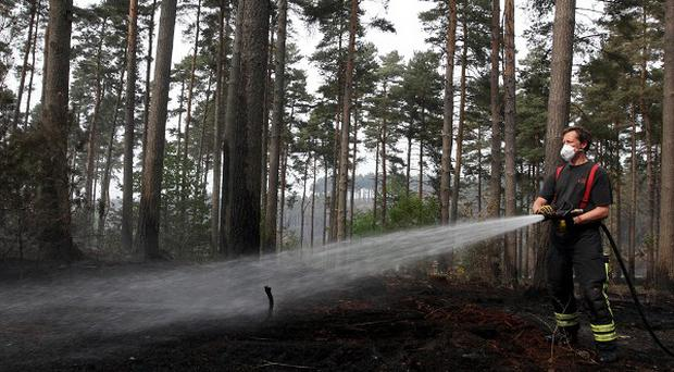 Firefighters are still tackling fires that broke out in the Swinley Forest near Crowthorne, Berkshire earlier this week