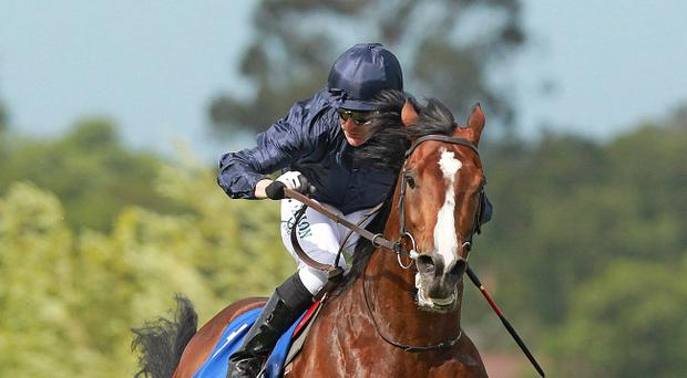 Kieren Fallon rides Recital to victory at Leopardstown yesterday