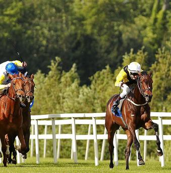 Ballybacka Lady springs a shock under Fran Berry