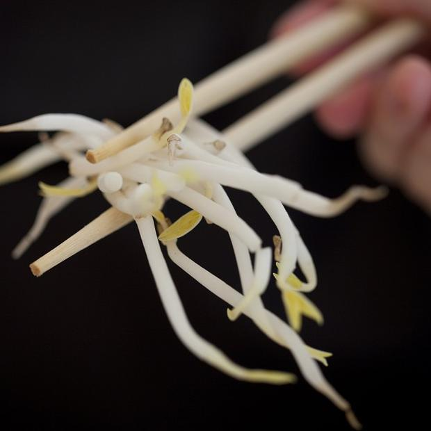 German beansprouts were thought to be the liikely cause of the E.coli outbreak that has killed 22 people in Europe (AP)