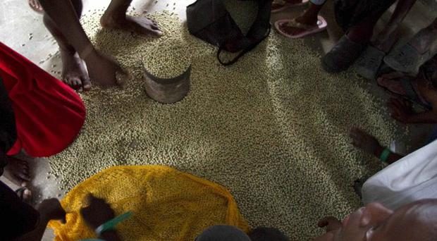 Flood refugees from the Lake Azuei area divide up rice as they take shelter in a school(AP)
