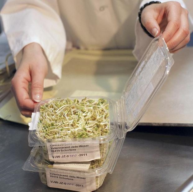 Bean sprouts are tested for E.coli, as German officials said the deadly outbreak appears to be on the decline (AP)