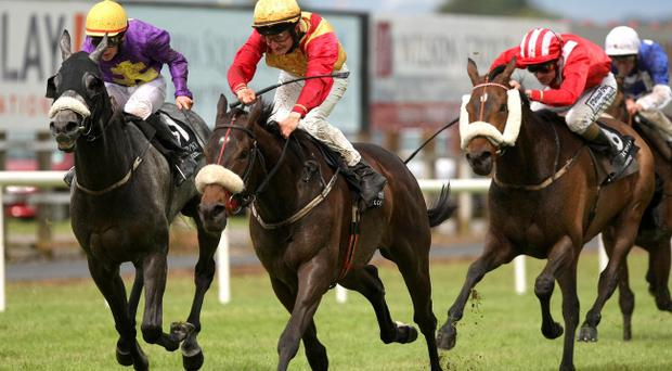 Banksters Bonus, ridden by Shane Foley, races home to win the Magners Ulster Derby