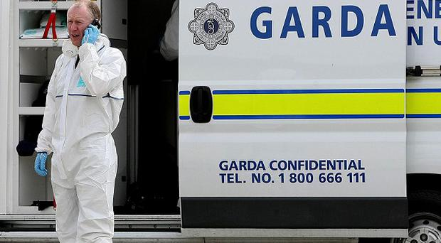 Two viable improvised explosive devices have been made safe near Dublin