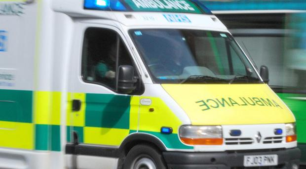 A woman has died following an incident involving a runaway horse and cart