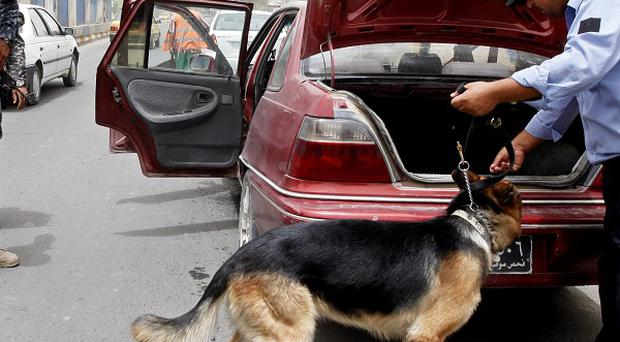 An Iraqi policeman uses a dog to search a car at a checkpoint in Baghdad (AP)