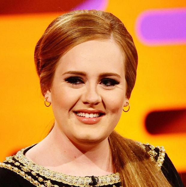 Adele is to resume her North American tour after recovering from laryngitis