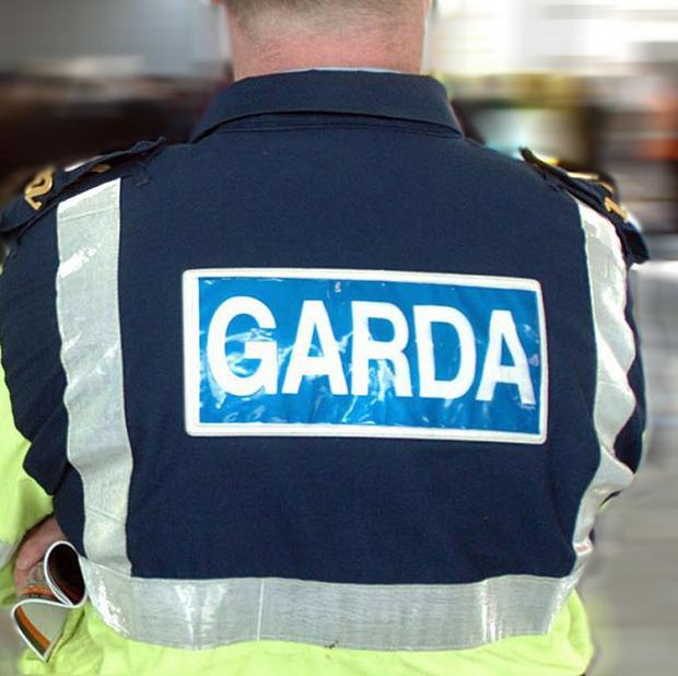 Gardai are investigating after a boy was killed as he chased a dog across a road