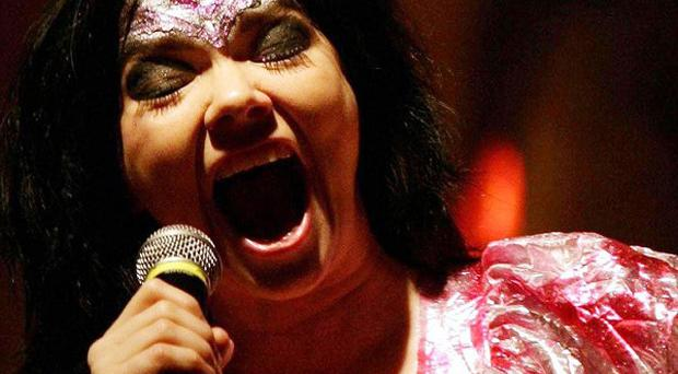 Bjork is to headline at Electric Picnic
