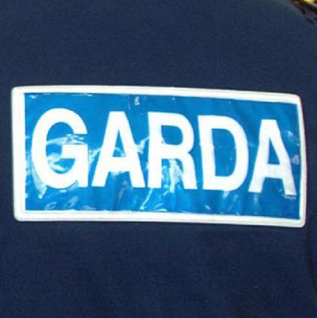 Two men have been arrested by gardai investigating dissident republicans