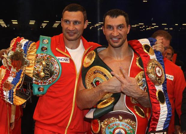 Brothers united: Wladimir Klitschko (right) and his brother Vitali both share an intense dislike for David Haye