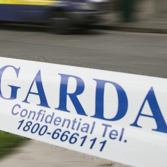 Gardai in Wexford have appealed for witnesses after a young man died from head injuries on Friday