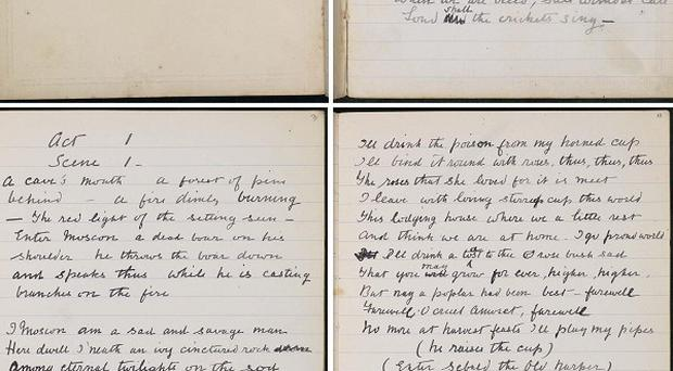 Pages from one of the five notebooks and loose scraps of paper from WB Yeates's Love and Death