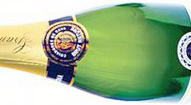 <b>8. Gramona Brut Nature Gran Reserva 2007</b> With strains of stone fruit and almonds, this Spanish offering makes a playful aperitif. <b>£16.95, bbr.com</b>