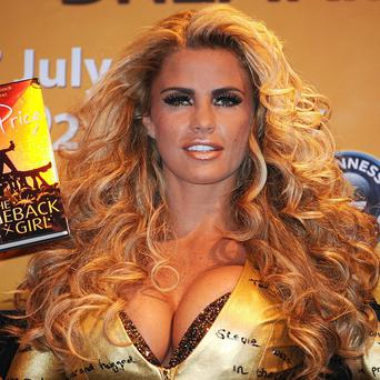 Katie Price is planning a TV road trip across the US