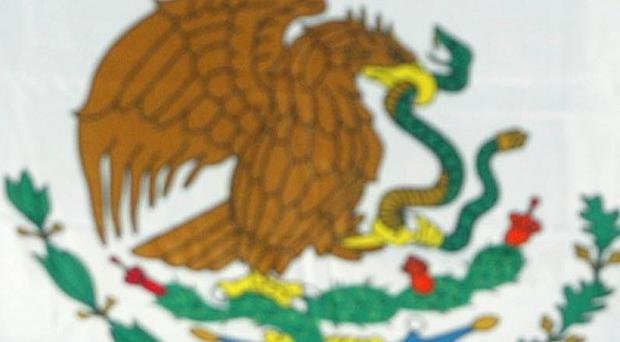 An entire police force in the north Mexican city of Ascension has resigned after a series of attacks on officers