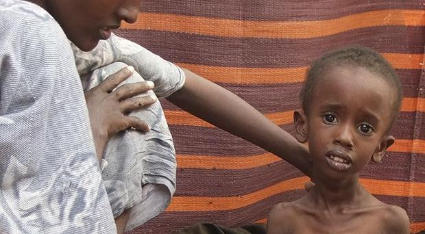 The Government has pledged another half a million euro in aid to support the most vulnerable in the Horn of Africa (AP)