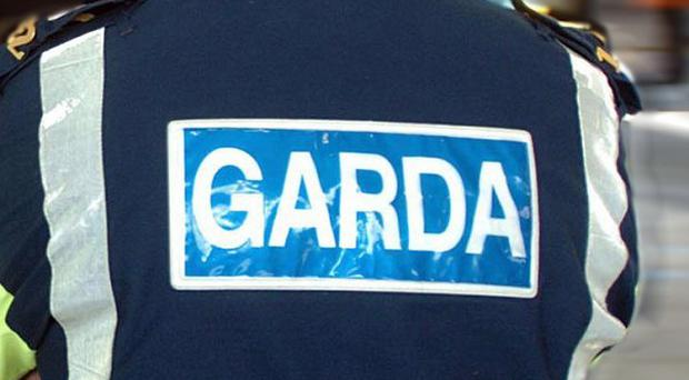 Two men have been injured after a light plane crashed in Co Tipperary, gardai said