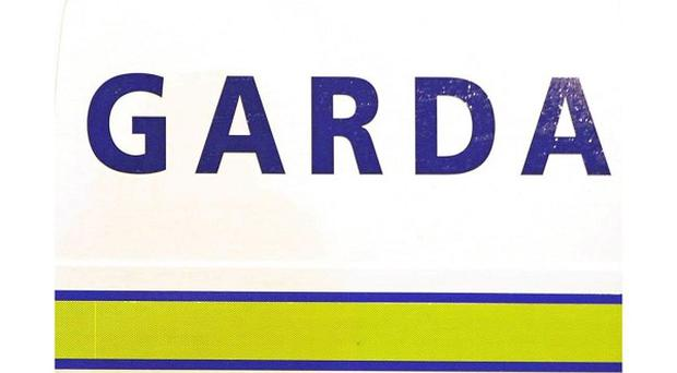 Two gardai broke down the door of a pensioner's home after an arson attack