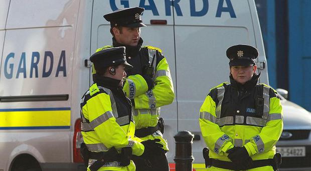 A Garda sargeant has been stabbed in the hand while trying to break up a fight