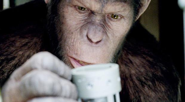 Caesar the chimp, played by Andy Serkis, in a scene from Rise Of The Planet Of The Apes