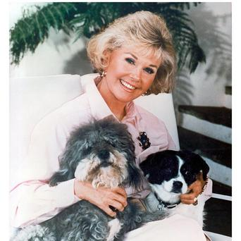 Doris Day is a fan of Michael Buble