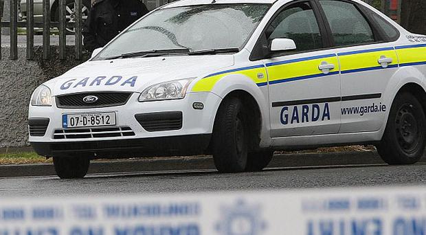 Gardai are working with the PSNI to solve a tiger kidnapping