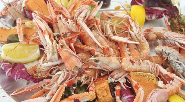Flavours of the Foyle Seafood Festival will be at Guildhall Square
