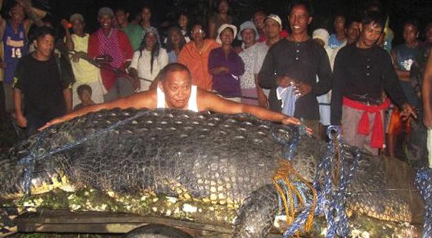 Mayor Cox Elorde of Bunawan township in the Philippines measures a huge crocodile he hopes will become the central attraction of a tourist park(AP)