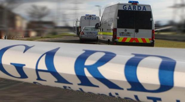 An 80-year-old man died in Tralee after he was hit by a truck