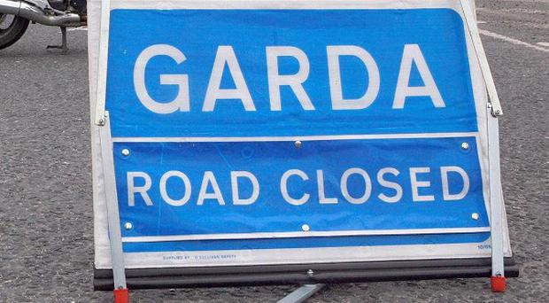A 61-year-old cyclist has been killed in a hit and run in Co Kildare