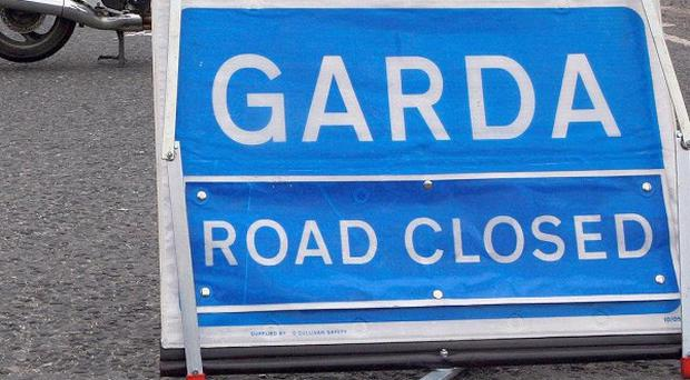 A motorist has been killed and his passenger injured in a car crash in Limerick