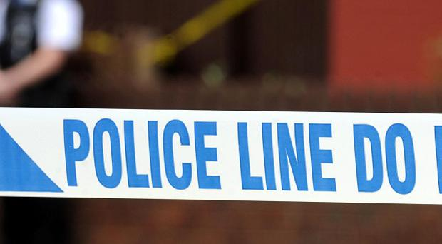 A 16-year-old girl left in a coma after an attack more than four months ago has died, police have said