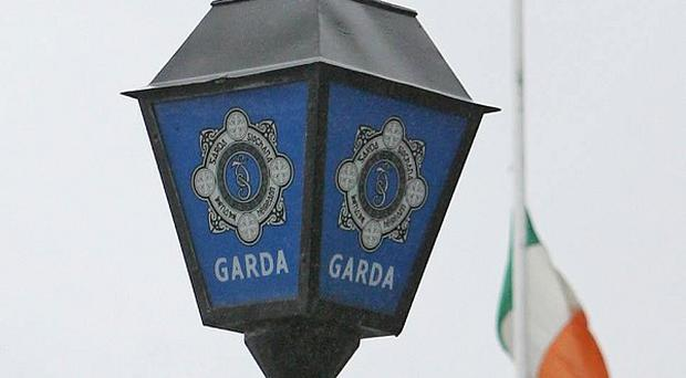 Gardai are hunting an armed gang after a botched tiger kidnapping