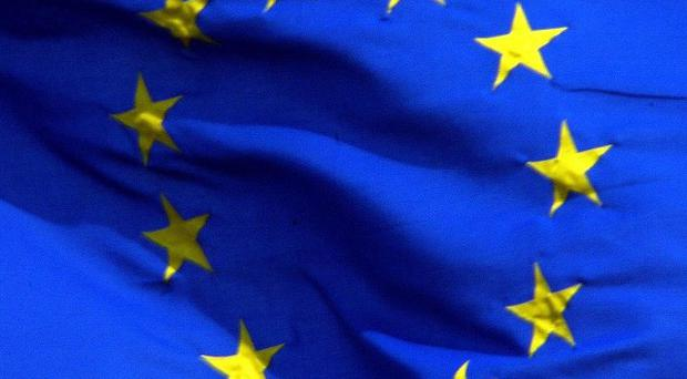 Voluntary groups claim that spending cuts could be halved to meet the requirements under the EU/IMF bailout deal
