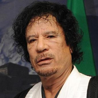 Libya's chief forensic pathologist said an autopsy has confirmed that Muammar Gaddafi was killed by a shot to the head
