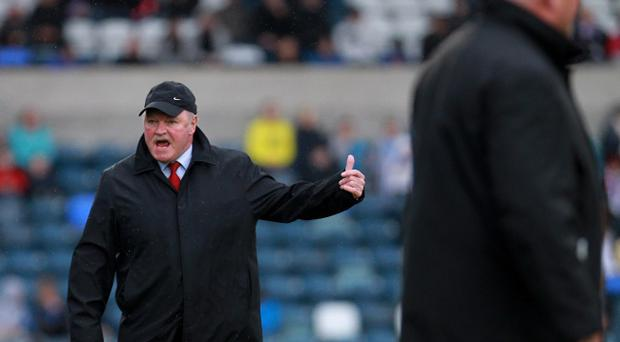 Portadown manager Ronnie McFall during Saturday's Carling Premiership game against Linfield at Windsor Park, Belfast