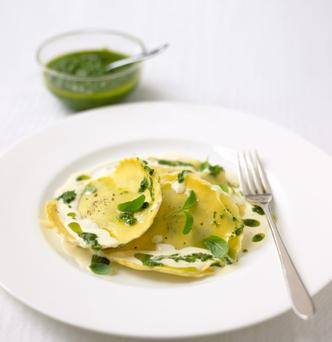 Spinach and ricotta raviolo with walnut pesto and a cream and basil sauce