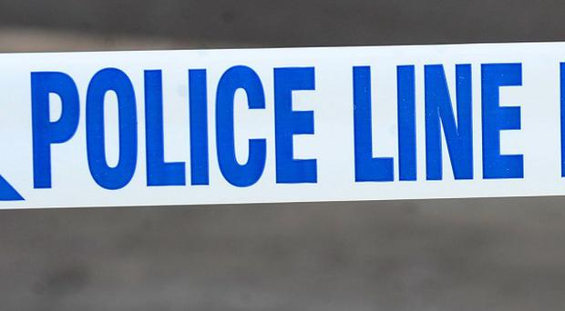 A man has been arrested on suspicion of murder after a woman's body was found