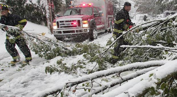 Early snow has downed trees on the US Eatern Coast (AP)