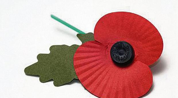 Suffering symbol: the poppy